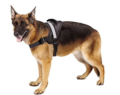 EXPAWLORER reflective harness for big dogs