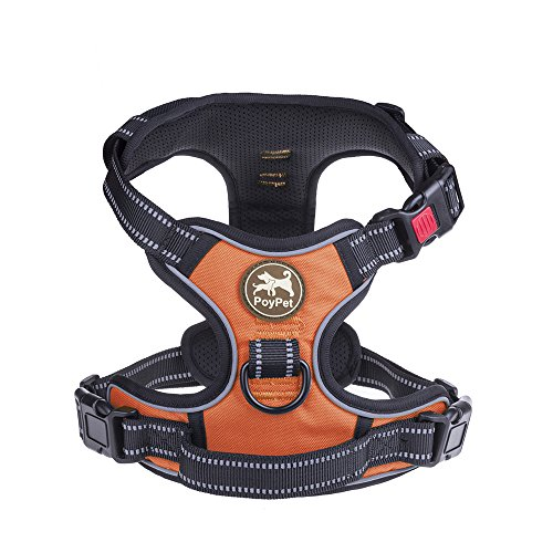 PoyPet reflective adjustable harness