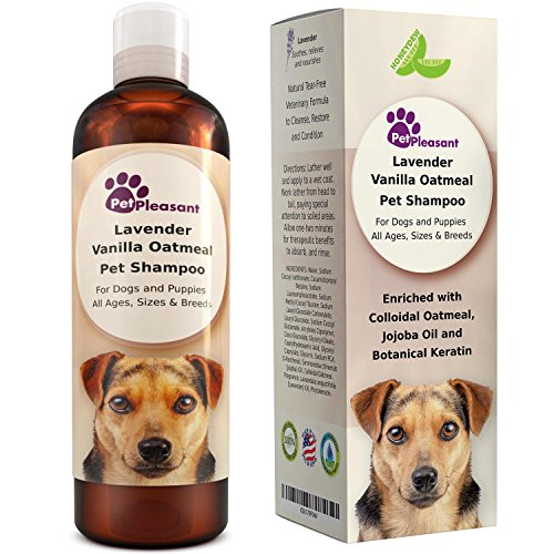Maple Holistics Vanilla Oatmeal & Lavender pet shampoo