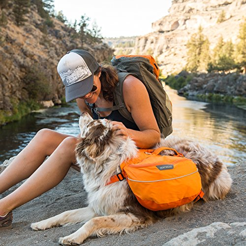 Ruffwear Approach Full Day Hiking Backpack