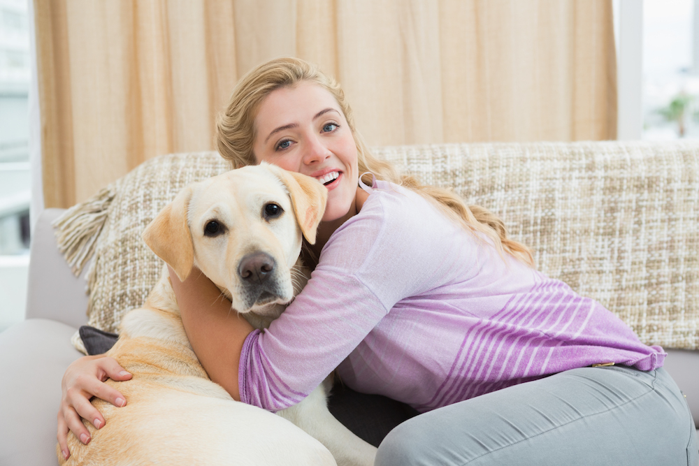 Best House Dogs – Which Breeds are the Best Inside Pets?