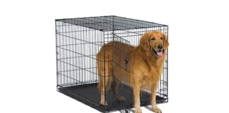 Best Dog Crates Review