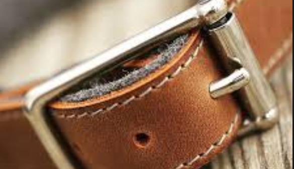 brown-leather-dog-collar