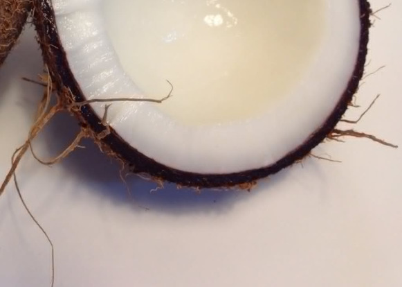 coconut-shell-broken-in-half