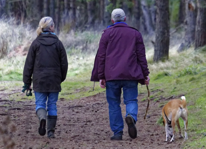 old-couple-walking-with-their-brown-dog
