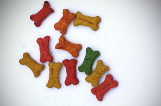 dog-biscuits-in-a-different-color