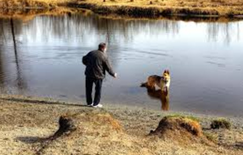 man-and-his-dog-bonding-beside-the-river
