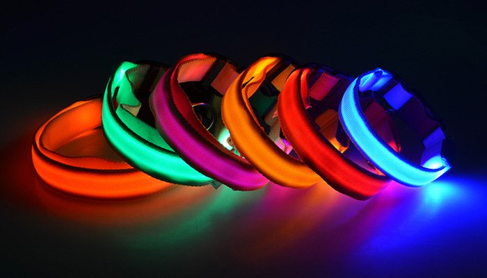 LED Dog Collars Review