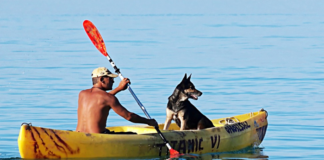 Man and dog kayaking