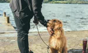 Man holding a dog with leash