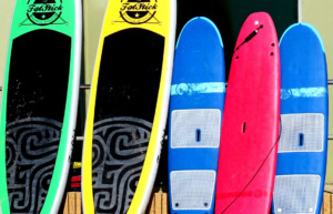 Display of paddle boards