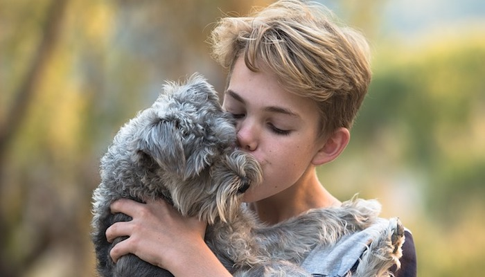Kids and Dogs – Guide to Compatibility