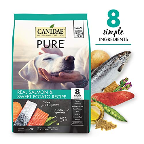 Canidae Pure Real Salmon Limited Ingredient