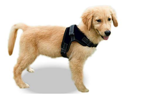Copatchy No Pull Reflective Adjustable Harness