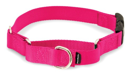 Petsafe Martingale Dog Collar with Buckle