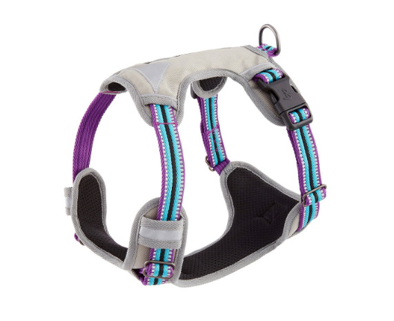 Blueberry Pet 3M Reflective Multi-Colored Padded Dog Harness.jpg