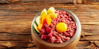 Healthy balanced fresh food in a dog or cat bowl with minced offal, chicken beef , egg yolk and fresh vegetables viewed high angle on a wooden floor