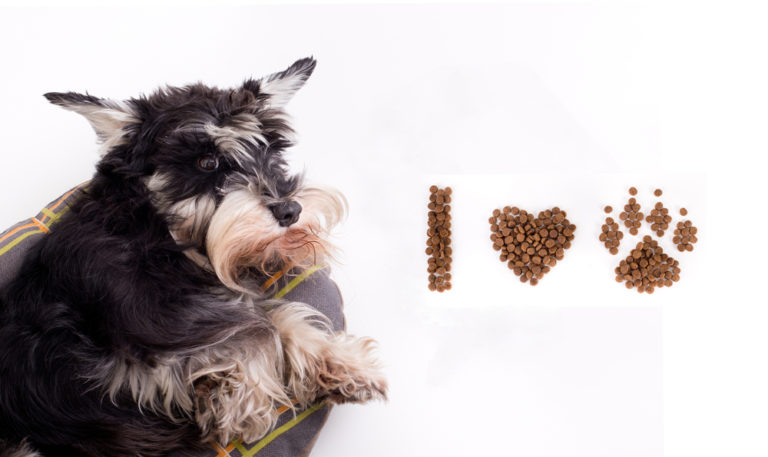 Best Dog Food for Miniature Schnauzers (2021 Review Updated)