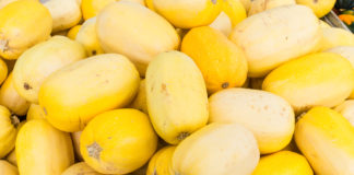 Spaghetti squash or vegetable spaghetti on display at the farmers market
