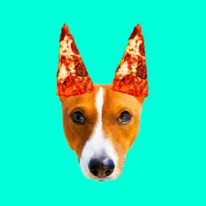Pizza lover. Dog. Contemporary minimal collage. Funny Fast food art project