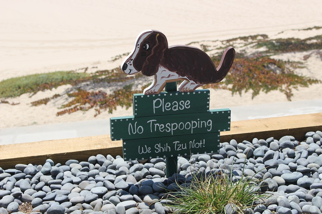 What to Do When Neighbors Dog Poops in Your Yard